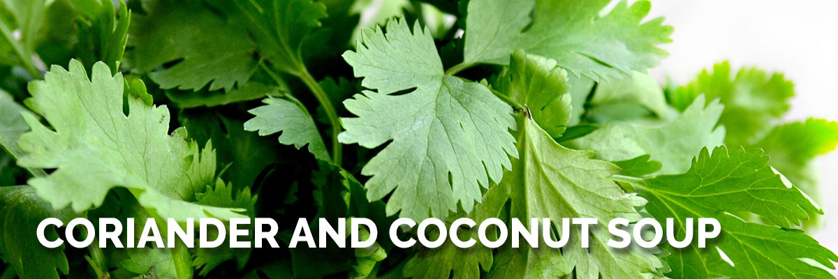Coriander and Coconut Soup Recipe